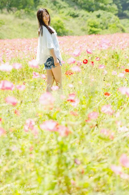 くりはま花の国@横須賀